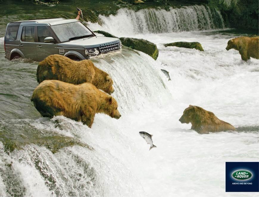 #CuandoLaPublicidad: Te convierte en oso grizzly.