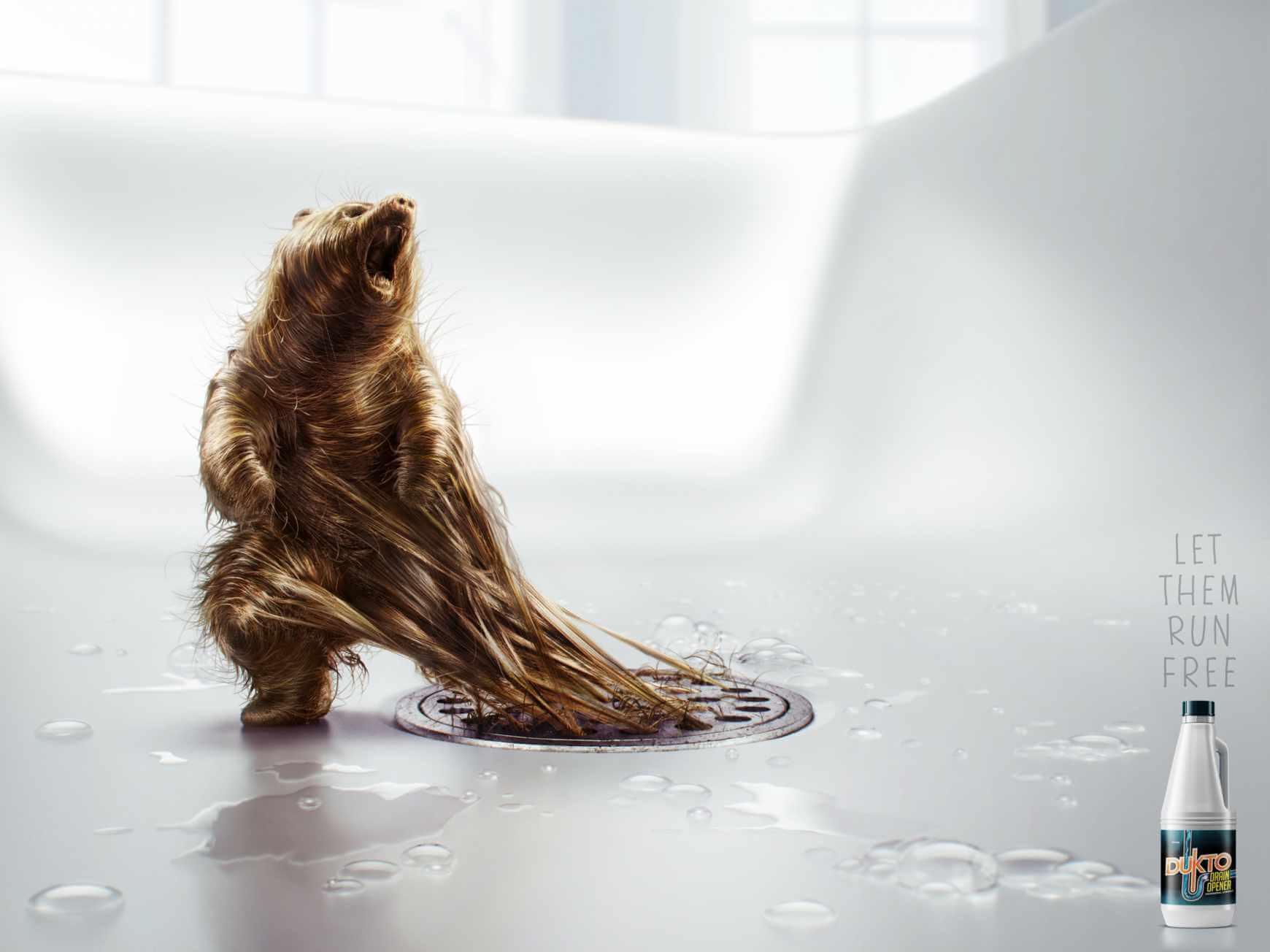 Dukto: Problemas de pelos.
