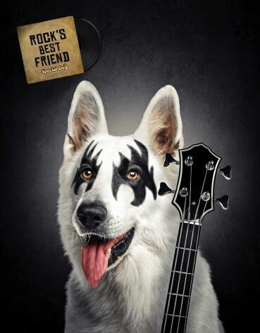 Special dog: Perrock.