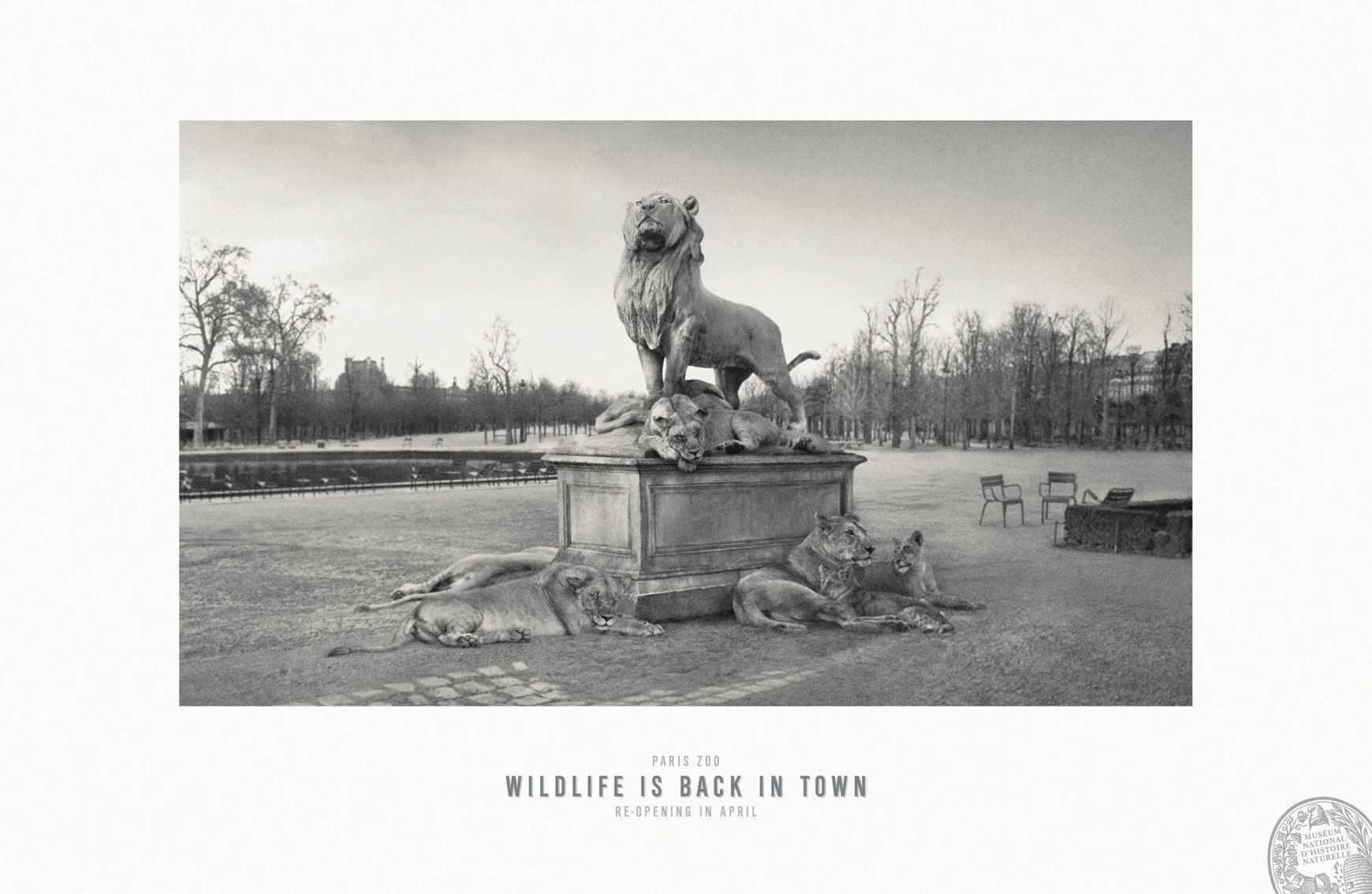 Parc Zoologique de Paris, la vida salvaje regresa a París.