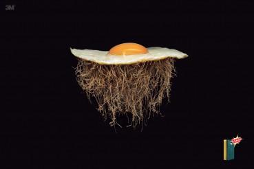 #CuandoLaPublicidad: Tiene raíces.